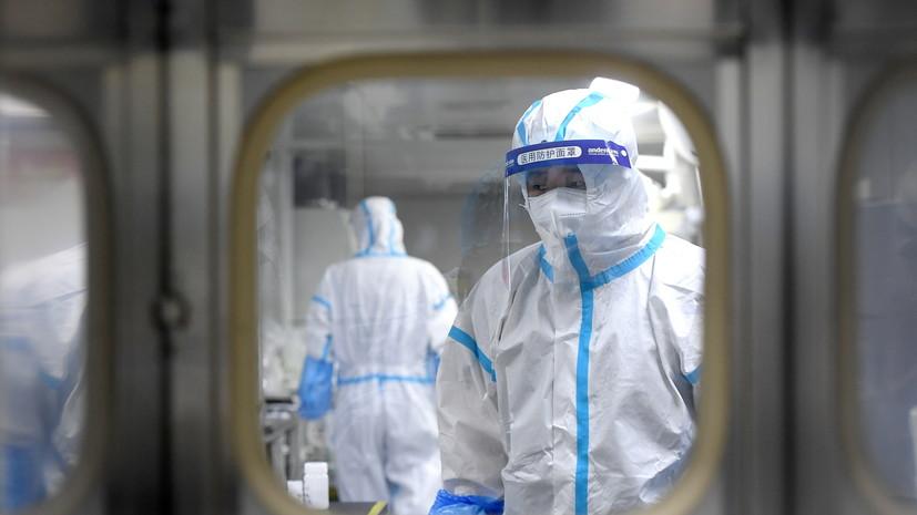 The Telegraph: учёные из Ухани планировали заразить летучих мышей коронавирусами в 2018 году
