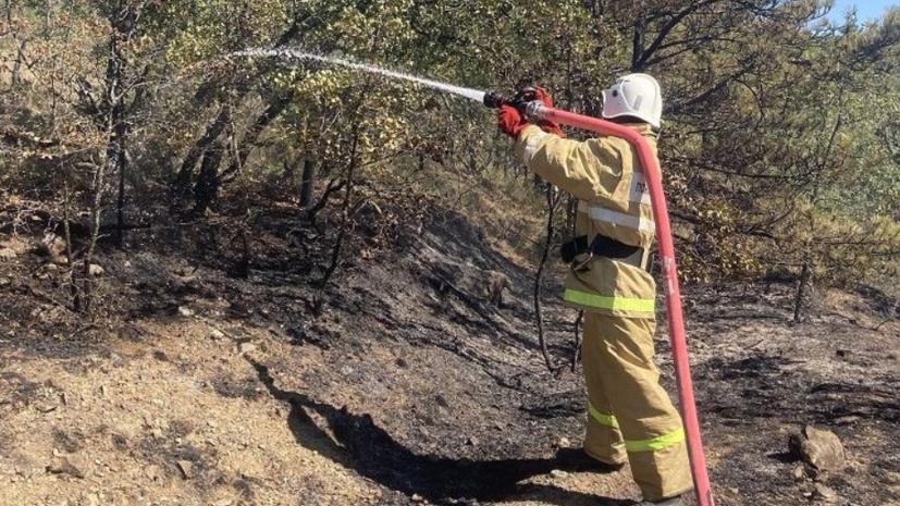 Количество лесных пожаров в Крыму сократилось почти на 84% в 2021 году