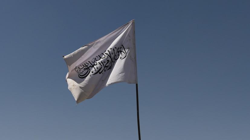 В МИД России высказались о представительстве талибов в ООН