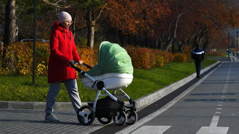 Экономист Беляев прокомментировал планы по индексации материнского капитала