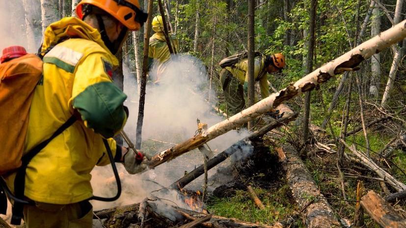 В России за сутки потушили 13 лесных пожаров