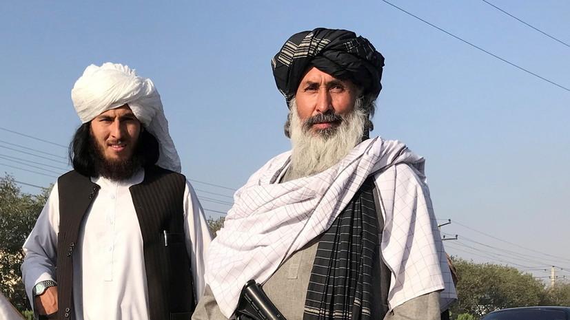 Талибы призвали мировое сообщество дать им время