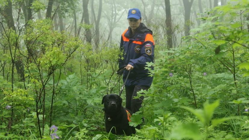 Пропавшие в районе горы Фалаза в Приморье туристки найдены
