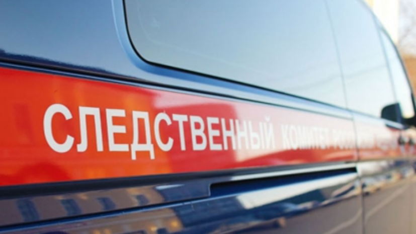 В Крыму СК возбудил дело после травмирования ребёнка в парке львов «Тайган»