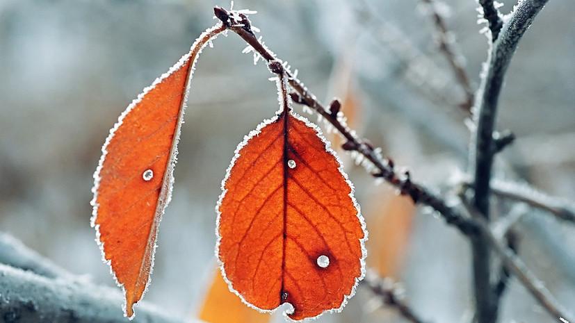 Спасатели предупредили о заморозках до -6 ˚С в Башкирии