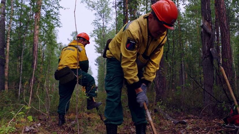 В России за сутки потушили 21 лесной пожар