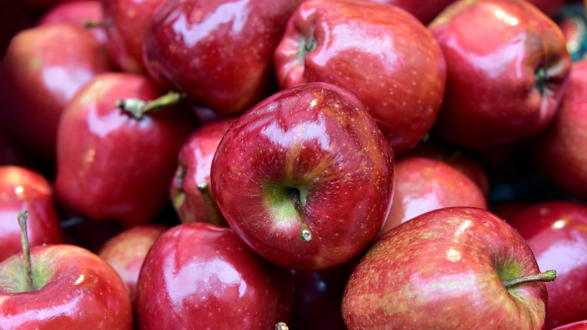 Диетолог рассказала, кому нельзя есть много яблок