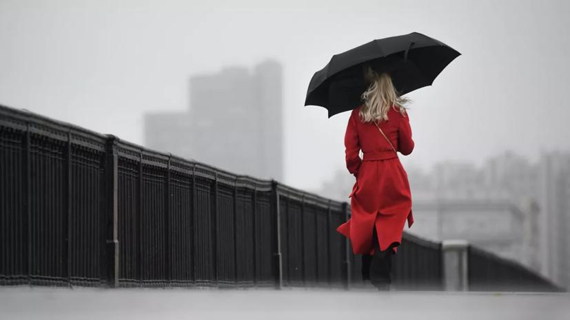 Синоптик рассказал о дождливой погоде на текущей неделе в Москве