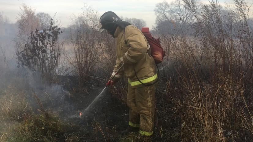 В России за сутки ликвидировали 17 природных пожаров