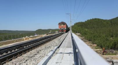Кабмин выделил ещё 1,9 млрд рублей на субсидирование железнодорожных перевозок
