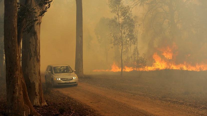 Австралия в огненном плену: власти говорят о катастрофе