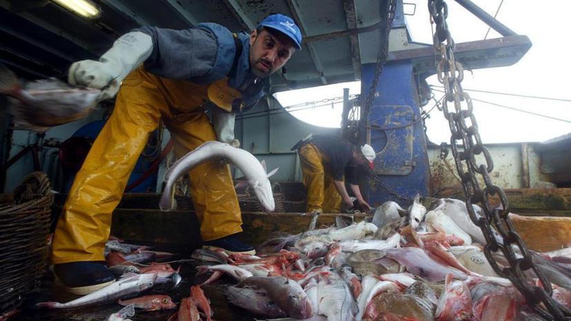 Рыбалка ежегодно приносит экономике Ирландии €750 млн