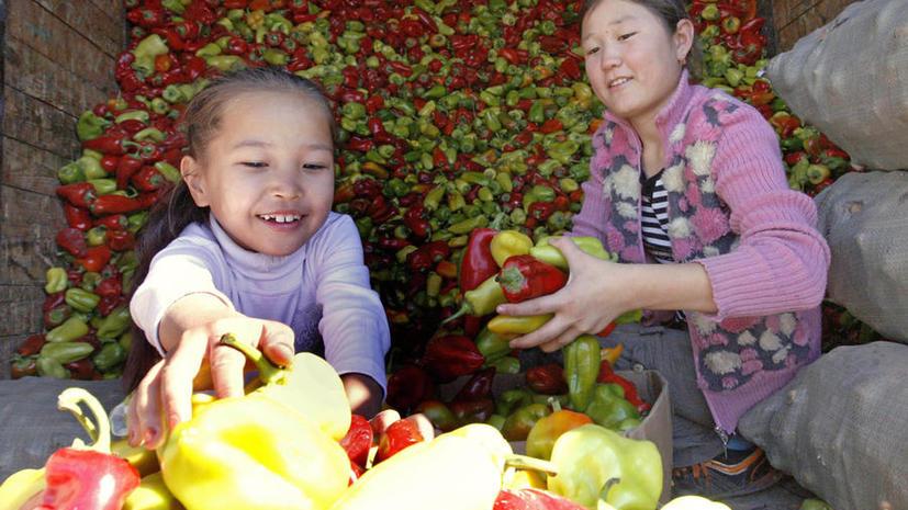 Гражданам США запретили усыновлять детей из Казахстана