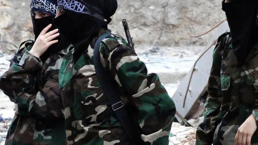 Лидер вооружённых сил сирийской оппозиции отказался от борьбы с правительством Асада