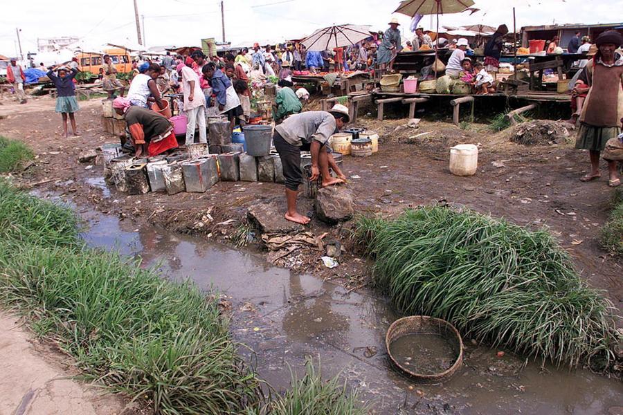 Эпидемия бубонной чумы вспыхнула на Мадагаскаре
