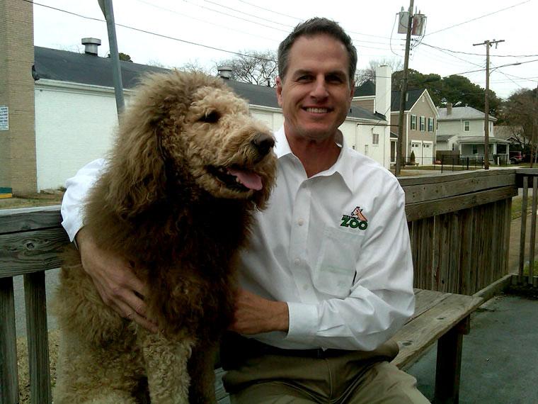 Незадачливые американцы приняли стриженую собаку за льва