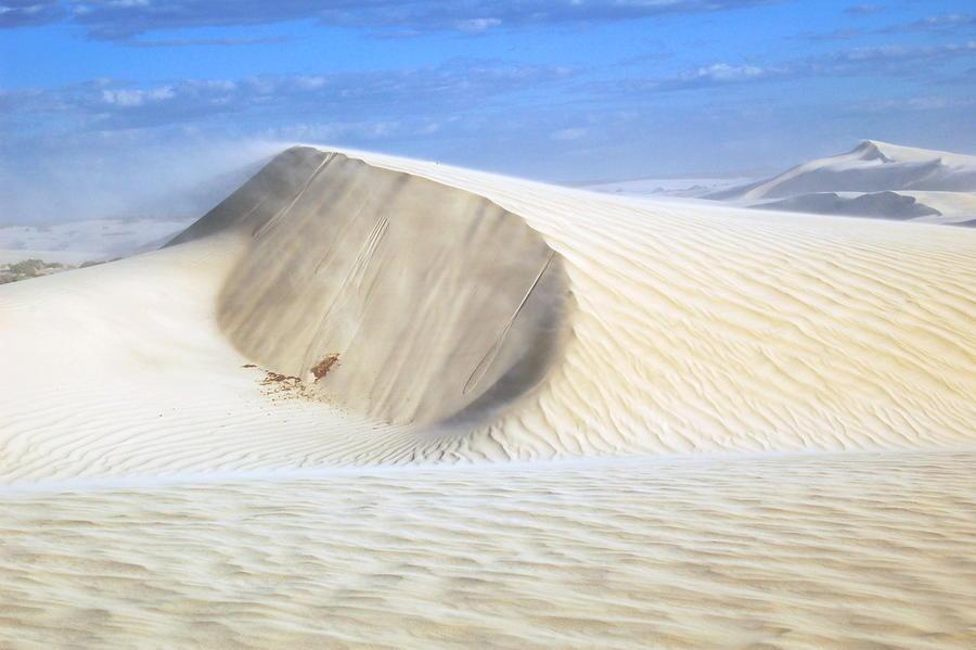Японские учёные научили песок удерживать воду