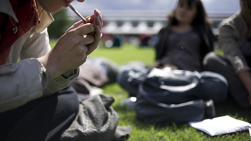 Норвежские врачи опровергли гипотезу о разрушительном влиянии марихуаны на мозг