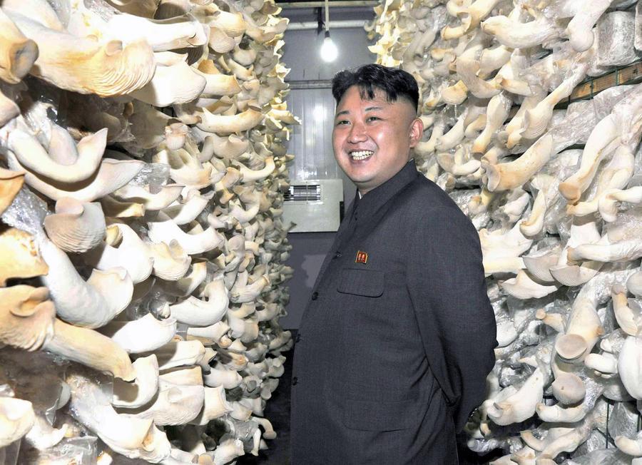 Ким Чен Ын оценил интервью с собой в $1 млн