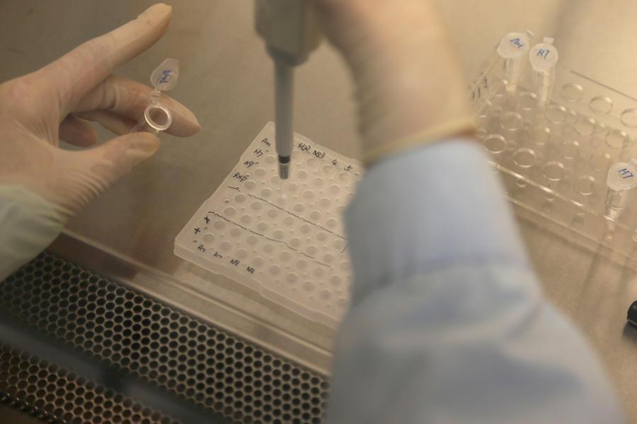 Верховный суд США разрешил брать образцы ДНК у подозреваемых