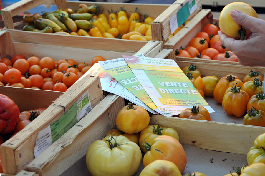 Правительство Аргентины велело жителям страны отказаться от помидоров