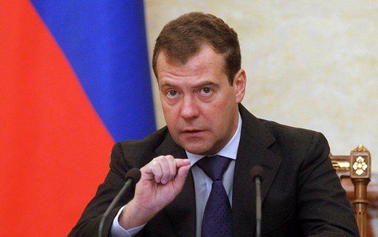 Дмитрий Медведев намерен сформировать совещательный орган, который защитит права детей-сирот