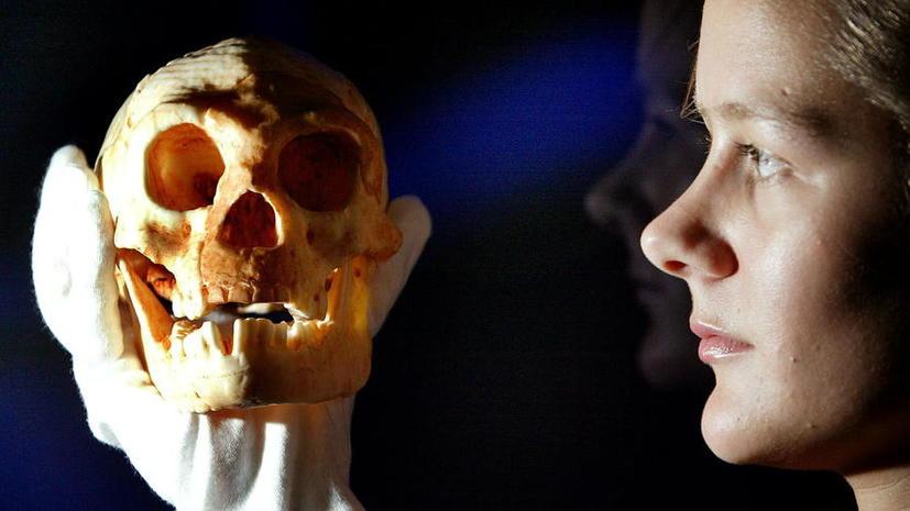 Учёные нашли причину малого роста доисторических «хоббитов»