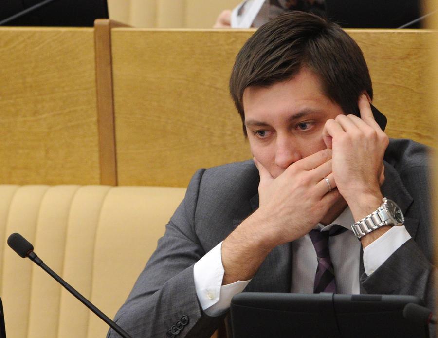 У депутата Дмитрия Гудкова журналисты нашли бизнес в Болгарии