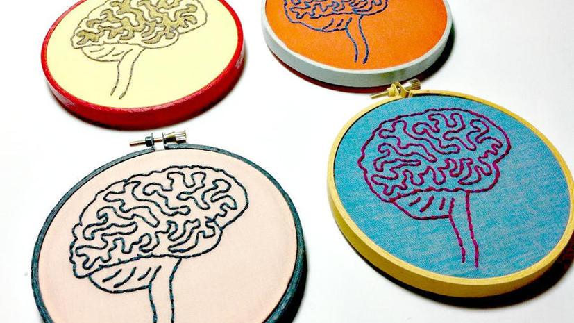 Ученые: «совы» и «жаворонки» различаются структурой мозга