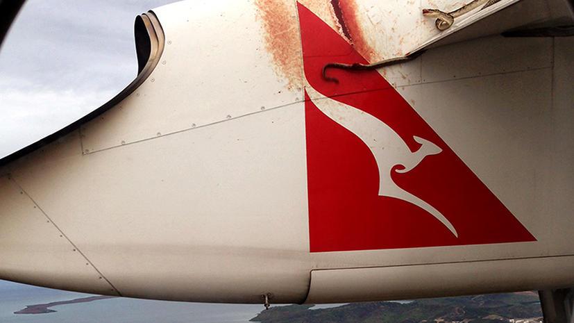 Змея пролетела 700 км,  уцепившись за крыло самолета