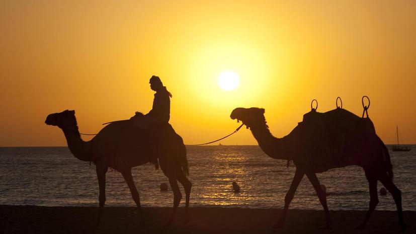 Учёные: В результате изменения климата Ближний Восток может стать необитаемым уже к концу века