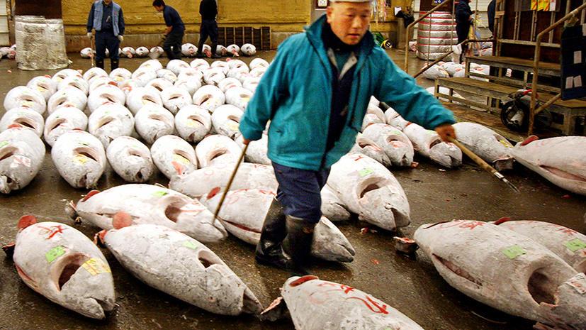 Знаменитый рыбный рынок Цукидзи  в Токио переносят на новое место
