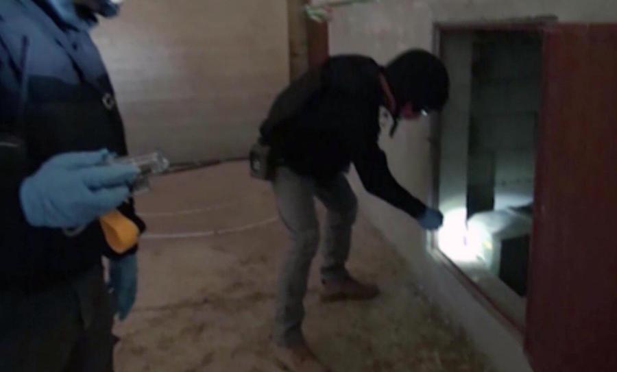 Эксперты ОЗХО и ООН осмотрели 11 объектов с химоружием в Сирии