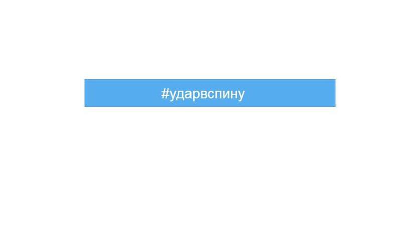 #Ударвспину: пользователи соцсетей обсуждают сбитый Турцией Су-24
