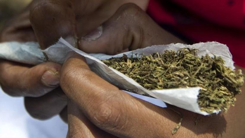 Власти Грузии задумались о легализации марихуаны