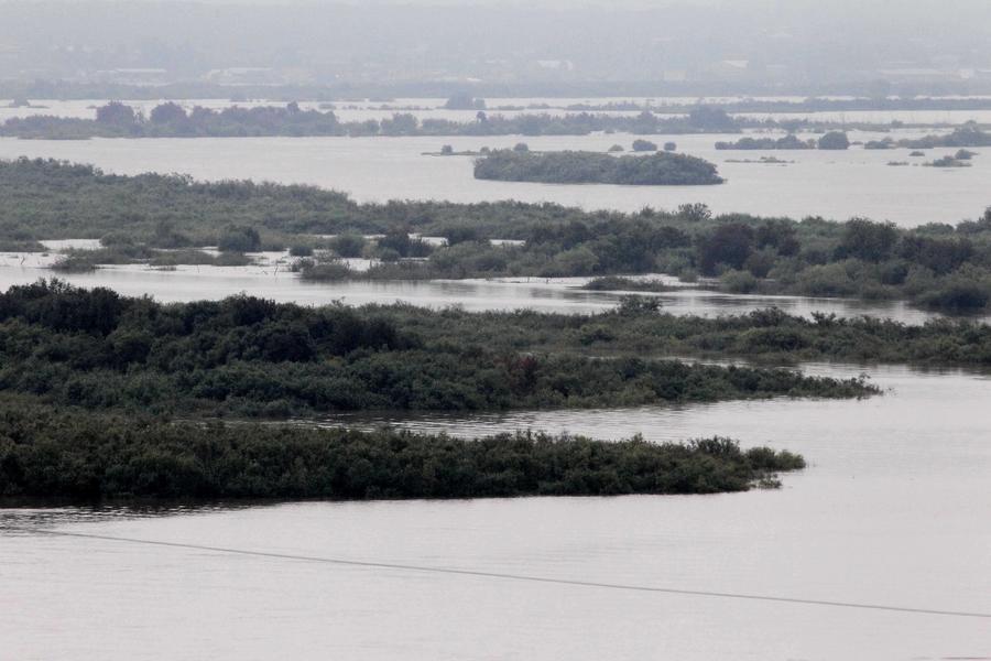 МЧС: Уровень реки Амур в районе наводнения достиг исторического максимума
