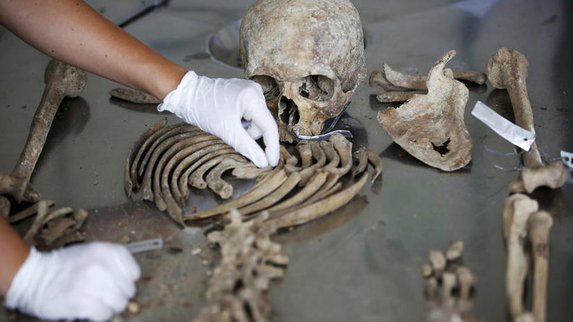 Самый древний: французский подросток обнаружил зуб человека возрастом не менее 550 тыс. лет