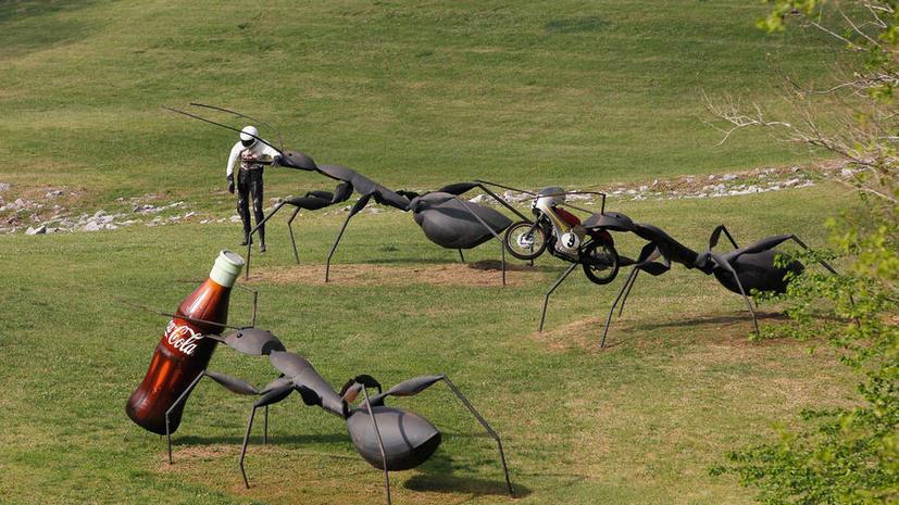 В США создадут робота-муравья, который поможет искать людей под завалами