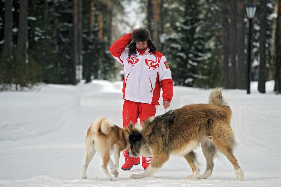 Фото Путина с собаками заинтриговали российских блогеров