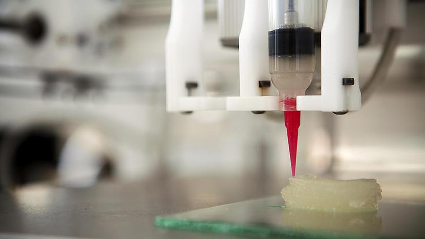 Учёному удалось напечатать на 3D-принтере коленный хрящ