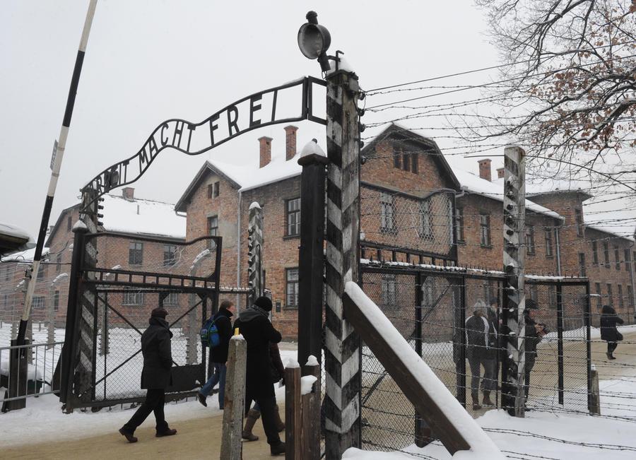 Историк: Сотрудники МИД Польши должны знать, кто освободил их страну от нацистов