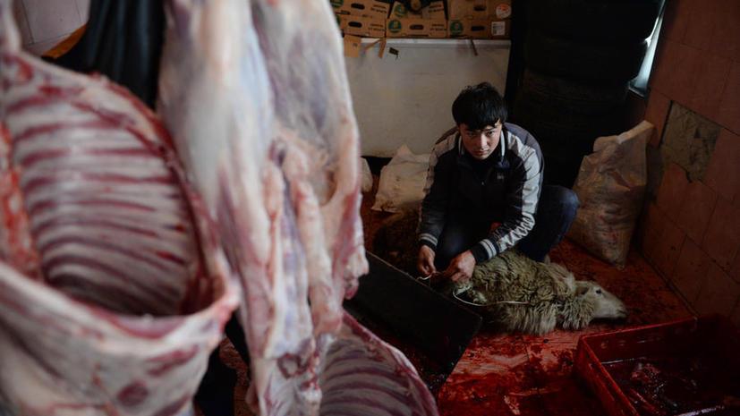 Пакистанские террористы собирают деньги от продажи шкур жертвенных животных