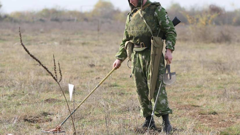 В Московской области найдено минное поле времён Великой Отечественной войны