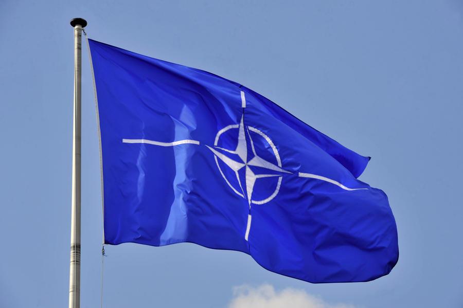 Страны НАТО опровергли поставки оружия Украине