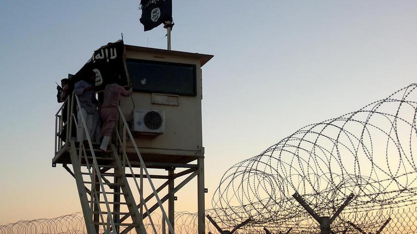 Египетские власти ввели чрезвычайное положение на Синайском полуострове