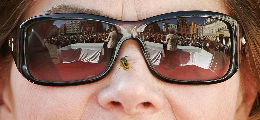Исследование: Человеческий нос может распознавать до триллиона различных запахов