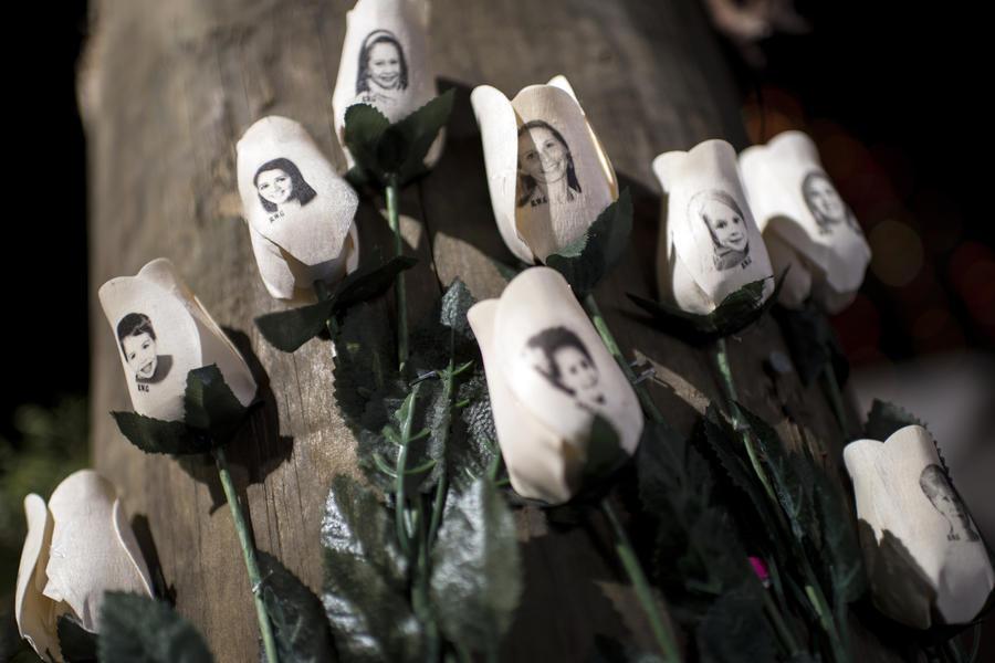 Американский убийца детей Адам Ланза готовил для бойни специальный арсенал