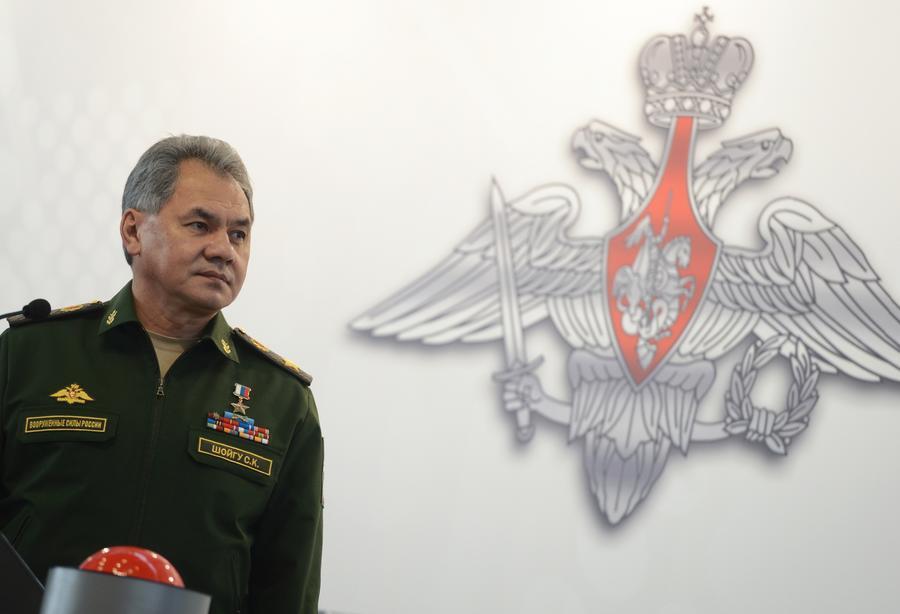 Сергей Шойгу: ВКС России за три дня поразили 600 целей террористов в Сирии