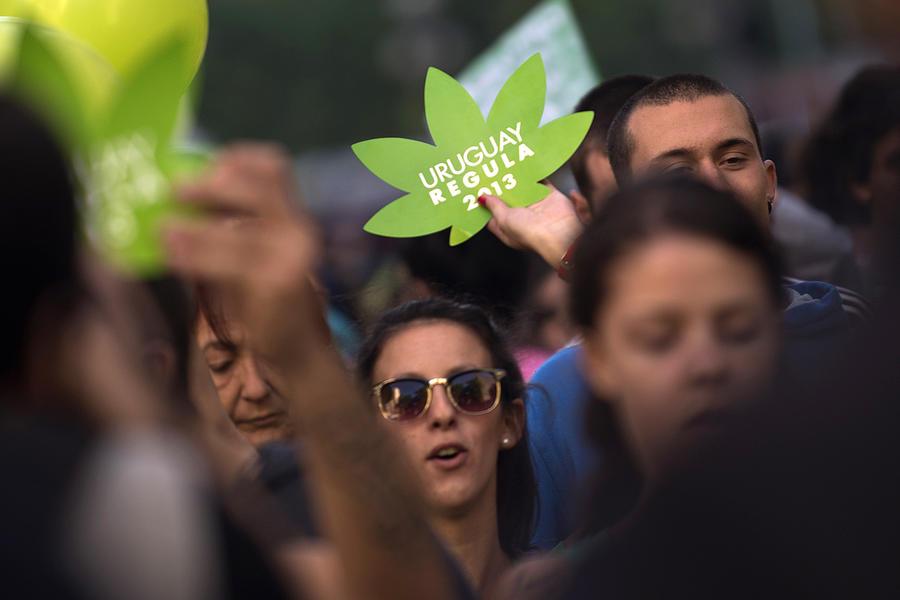 Уругвай стал первой в мире страной, легализовавшей производство и продажу марихуаны