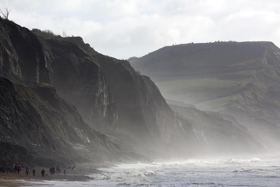 Британских охотников за окаменелостями охватила золотая лихорадка